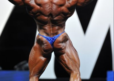 Derek Lunsford - 2017 IFBB Mr Olympia - Best Fit Posers